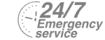 24/7 Emergency Service Pest Control in Uxbridge, Cowley, UB8. Call Now! 020 8166 9746