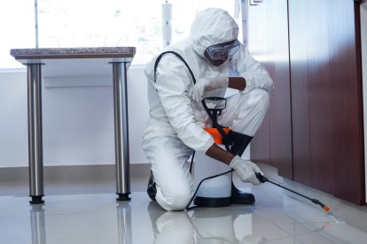 Emergency Pest Control, Pest Control in Uxbridge, Cowley, UB8. Call Now 020 8166 9746
